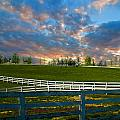 Kentucky Famous Horse Hotel by Randall Branham