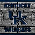 Kentucky Wildcats by Joe Hamilton