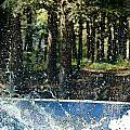 Ker Splash  by Debbie Portwood