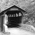 Herns Mill Bridge by Rose Cavaco
