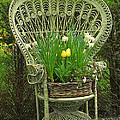Keukenhof Gardens 43 by Mike Nellums