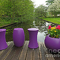 Keukenhof Gardens 47 by Mike Nellums