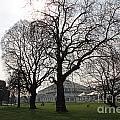 Kew Garden London by Julia Gavin