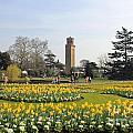 Kew Gardens London by Julia Gavin