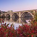 Graceful Feeling - Washington Dc Key Bridge by Carol VanDyke
