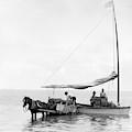 Key West Cart & Boat, C1890 by Granger