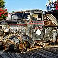Key West - Macs by Bill Cannon