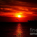 Key West Sunset by David Rucker