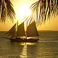 Key West Sunset by Joan  Minchak