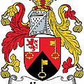 Keyes Coat Of Arms Irish by Heraldry