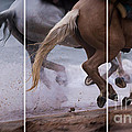 Kicking Up The Sand by Mary Lou Chmura
