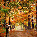 Kid With Backpack Walking In Fall Colors by Panoramic Images