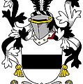 Kighley Coat Of Arms Irish by Heraldry