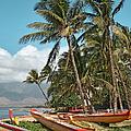 Sugar Beach Kihei Maui Hawaii by Sharon Mau