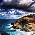 Kilaeua Point National Wildlife Refuge- Kauai  Hawaii by Douglas Barnard