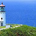 Kilauea Lighthouse by Barbara Zahno