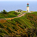 Kilauea Lighthouse In Color by Photography  By Sai