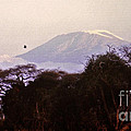 Kilimanjaro In The Morning by Lydia Holly
