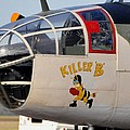 Killer Bee by John Black