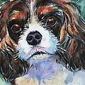 King Charles Spaniel  by Maria's Watercolor