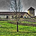 King Estate Winery by Thom Zehrfeld