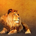 King Leo by Heike Hultsch