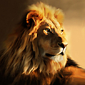 King Lion Of Africa