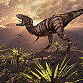 King Of The Dinosaurs.. A T.rex by Mark Stevenson