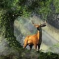 King Of The Woods by Daniel Eskridge