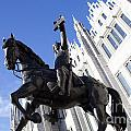 King Robert The Bruce by Diane Macdonald
