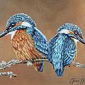 Kingfishers by Jane Girardot