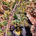 Kings Canyon V9 by Douglas Barnard