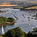 Kingsbridge Estuary Devon by Louise Heusinkveld