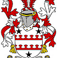 Kinnane Coat Of Arms Irish by Heraldry