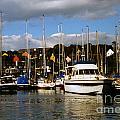 Kinsale Yacht Club by William Norton