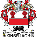 Kinsellagh Coat Of Arms II Irish by Heraldry
