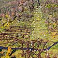 Kinzua Bridge Collapse by Steve Harrington