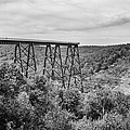 Kinzua Viaduct 6911 by Guy Whiteley