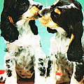 Kiss Me - Cocker Spaniel Art By Sharon Cummings by Sharon Cummings