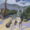 Kit Fox by Susan McNally