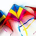 Kites by Michael Arend