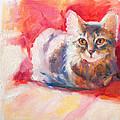 Kitten On Red Chair by Sharon Savitz