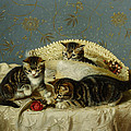 Kittens Up To Mischief by HH Couldery