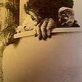Kitterly Monkey by Colette V Hera  Guggenheim