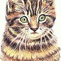 Kitty Kat Iphone Cases Smart Phones Cells And Mobile Cases Carole Spandau Cbs Art 350 by Carole Spandau