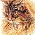 Kitty Kat Iphone Cases Smart Phones Cells And Mobile Cases Carole Spandau Cbs Art 352 by Carole Spandau