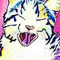 Kitty Kry by Pat Saunders-White