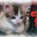Kitty Photo Art 01 by Thomas Woolworth