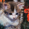 Kitty Photo Art 02 by Thomas Woolworth