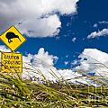 Kiwi Crossing Road Sign In Nz by Stephan Pietzko